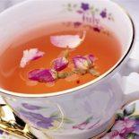 Иван чай при лечении и профилактики женских заболеваний