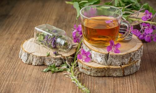 Купить Иван Чай в Краснодаре