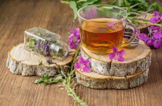 Полезные свойства и иван-чая с облепихой