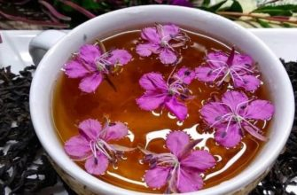 Чай и кипрея узколистного для мужчин