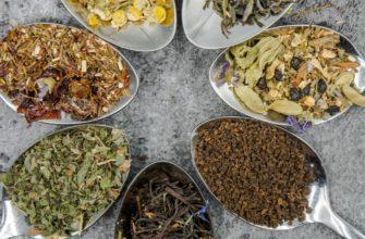 5 видов чая для крепкого иммунитета