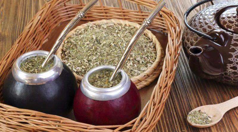 Парагвайский чай - напиток с магической силой